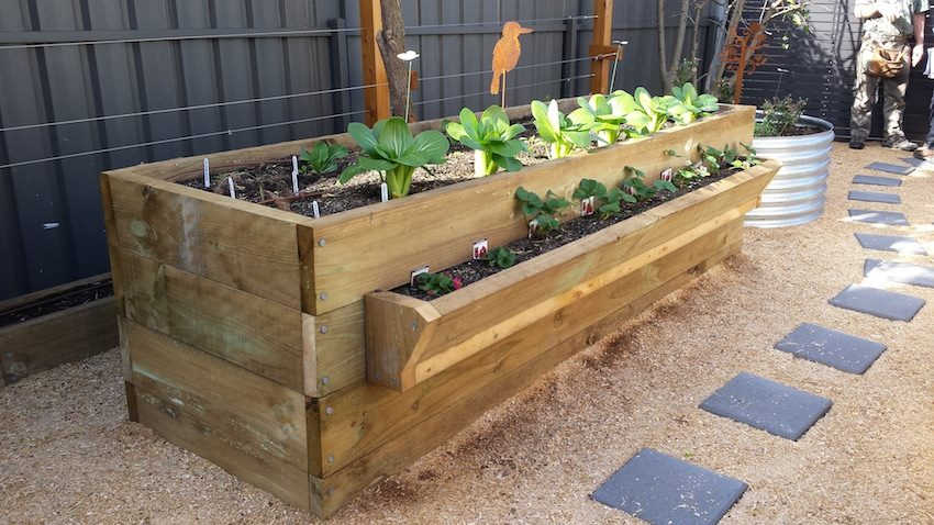 Installation of Royston Park Adelaide raised bed vegetable garden